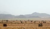 28 - L'expédition de Banu Qurayza