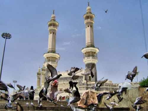 La Masjid Al-Haram /  La Mosquée Sacrée